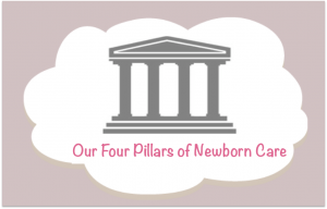 Four Pillars of Newborn Care - Hush Little Baby