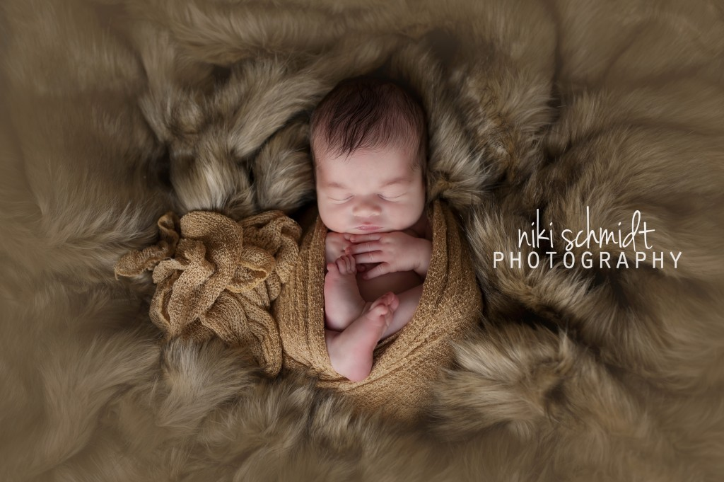 Niki Schmidt Photography 2