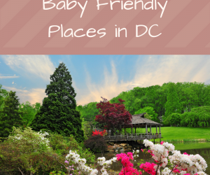 Baby Friendly Places in DC