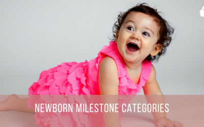 Newborn Milestone Categories