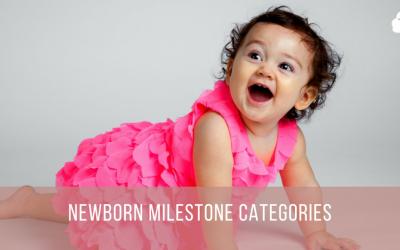 Newborn Milestone Categories