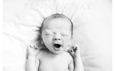 Top 5 Washington DC Newborn Photographers 2018